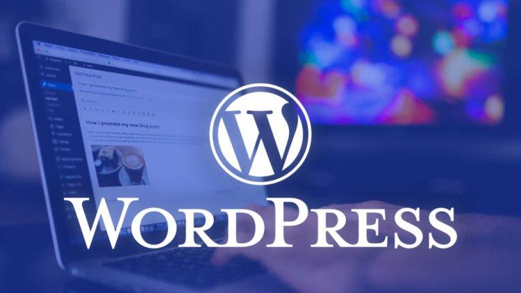 wordpress ana sayfadan yazı gizleme