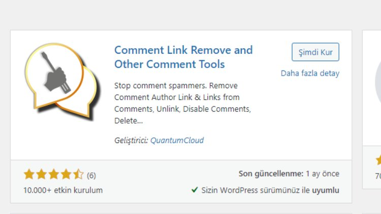 wordpress yorum link engelleme
